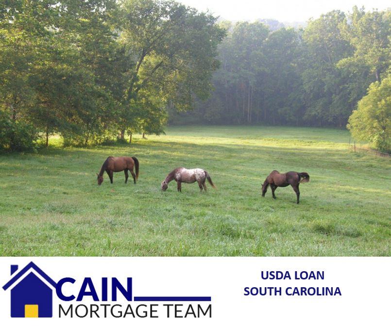 USDA loan South Carolina